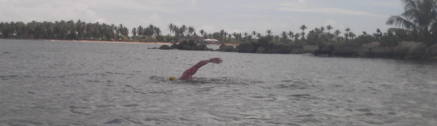 Open Water Swimming 2012