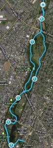 Cherry Blossom 10k (Branch Boork Park) Course map