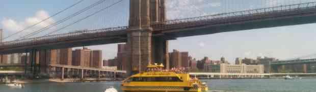 Brooklyn Bridge 1km Swim